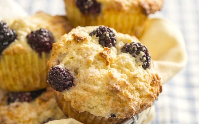 Small Batch Bakery-Style Blackberry Muffins